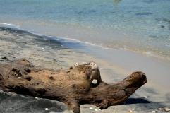 Spiaggia Le Cesine